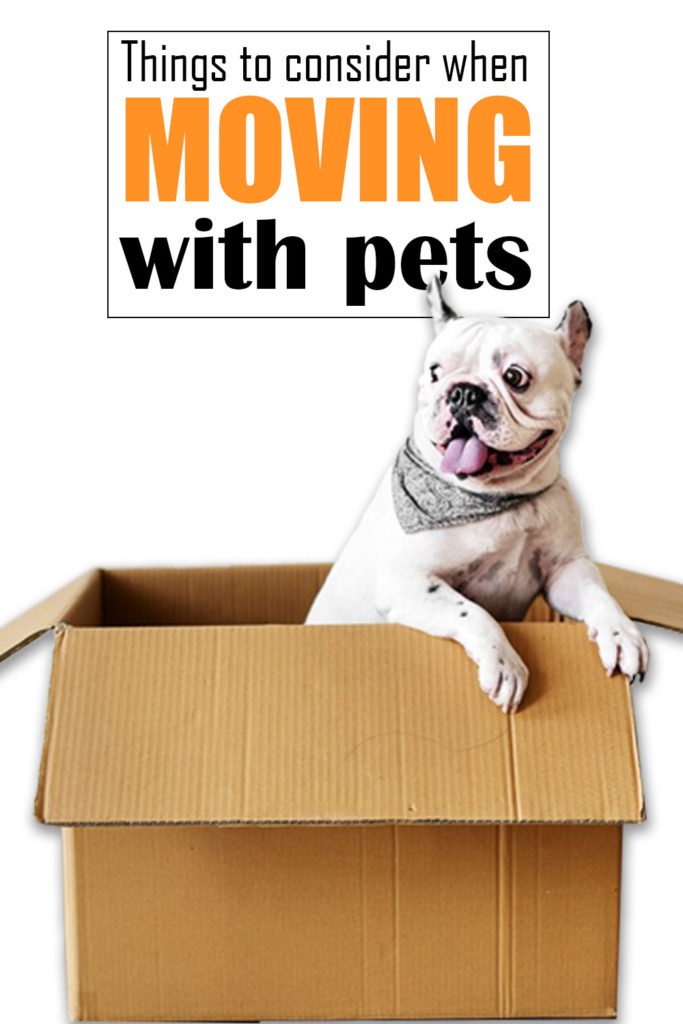 Moving Resources for pets